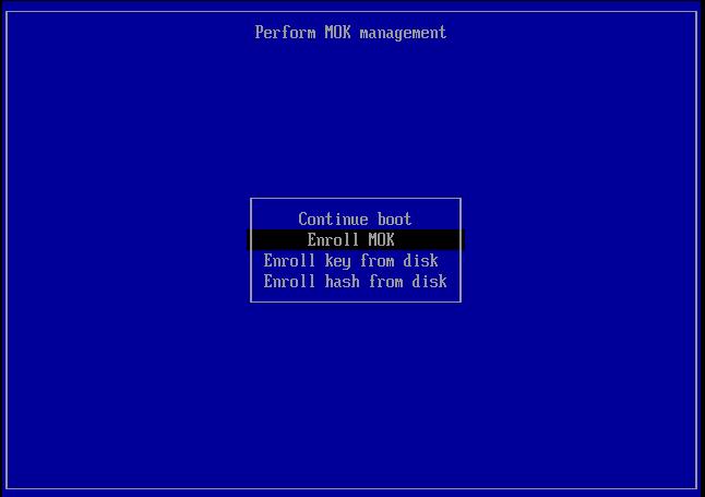 Screenshot_kvm-rawhide-64-uefi-1_2014-02-27_14:00:13_crop.png
